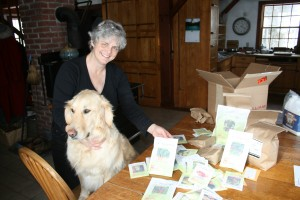 Martha and Caesar Sorting the First Seeds for 2013