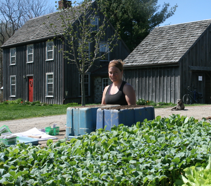 Stephanie Seeding Brassicas