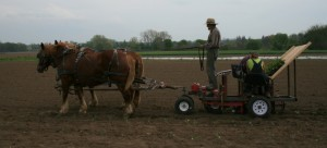 New Transplanter in Action!