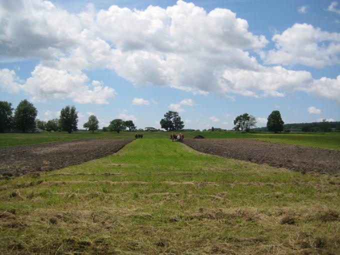 Ploughng 2014 Garden Area