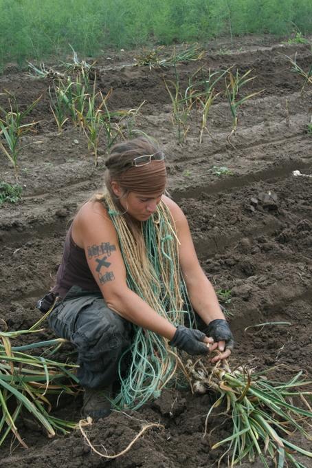 Stephanie Tying Garlic Bundles