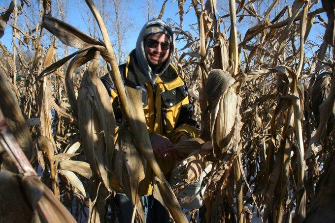 Grayden Picking Field Corn