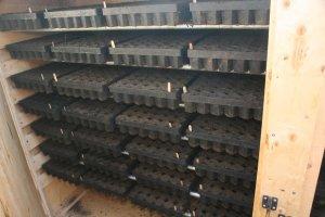 New Incubation Chamber for Seedlings