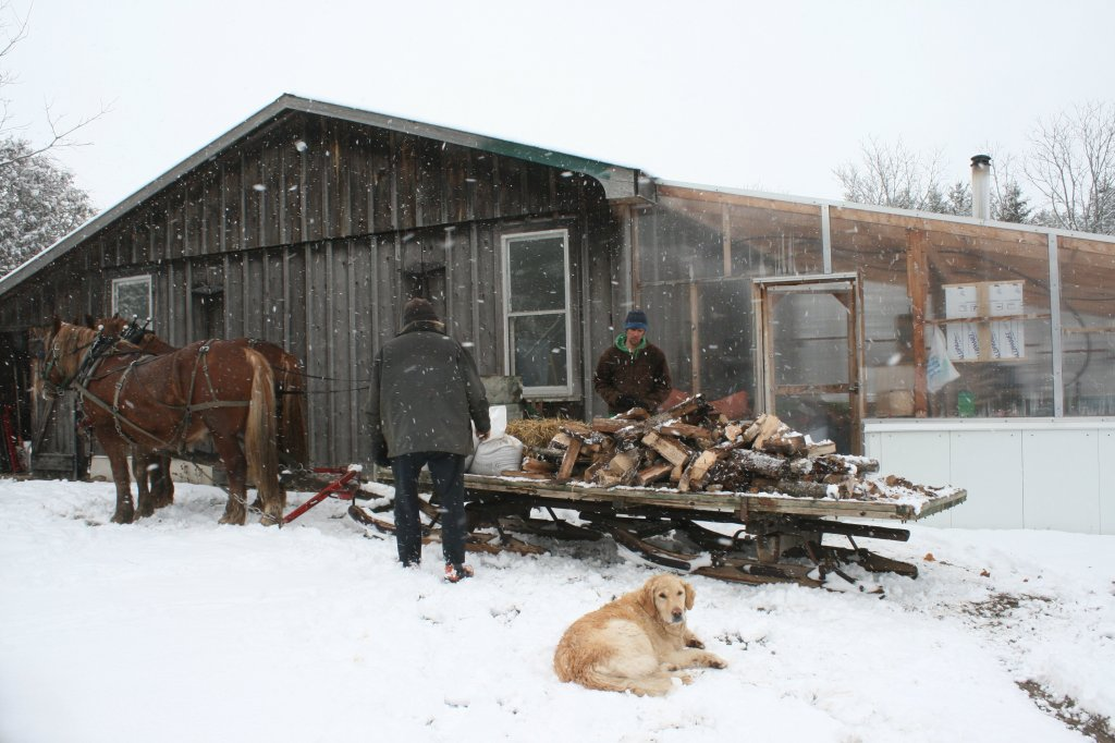 Sleigh Full of Firewood for Greenhouse