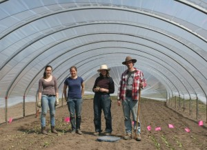 Hoop house erected and planted!
