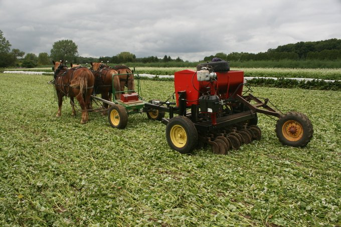 Horse Drawn No-Till Planter
